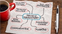 What opportunities are there in project management?